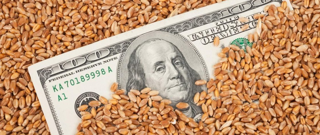 hundred-dollar bill in grain_Alexan2008_iStock_Thinkstock